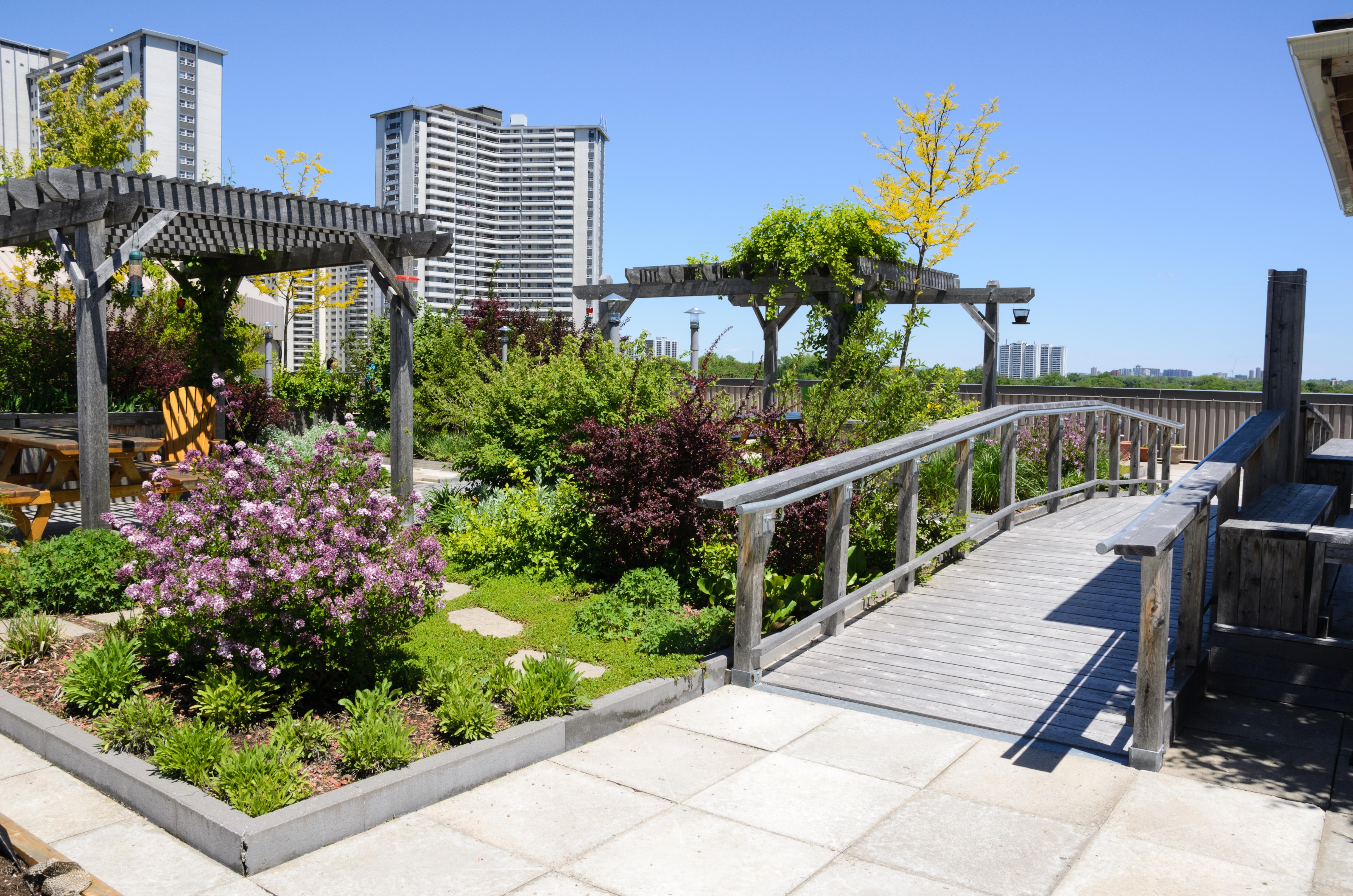 Great commercial garden