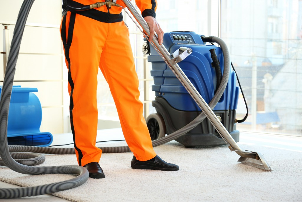Professional carpet cleaner cleaning a carpet