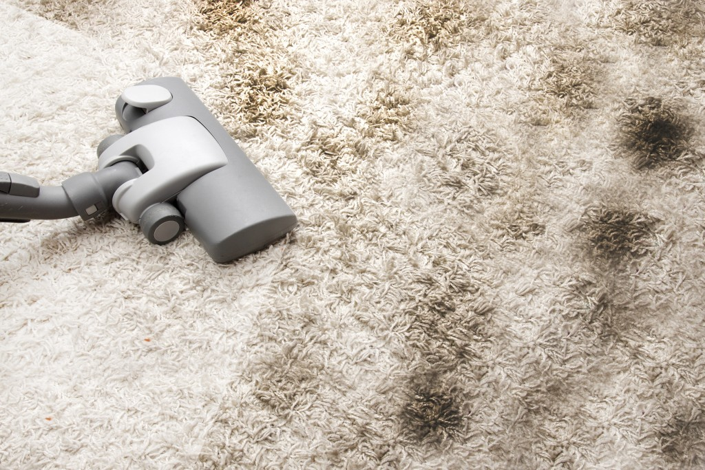 Vacuum cleaning dirty carpet