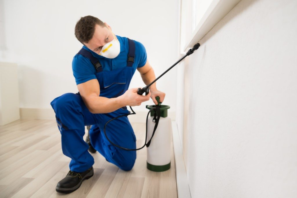 Male worker spraying pesticide
