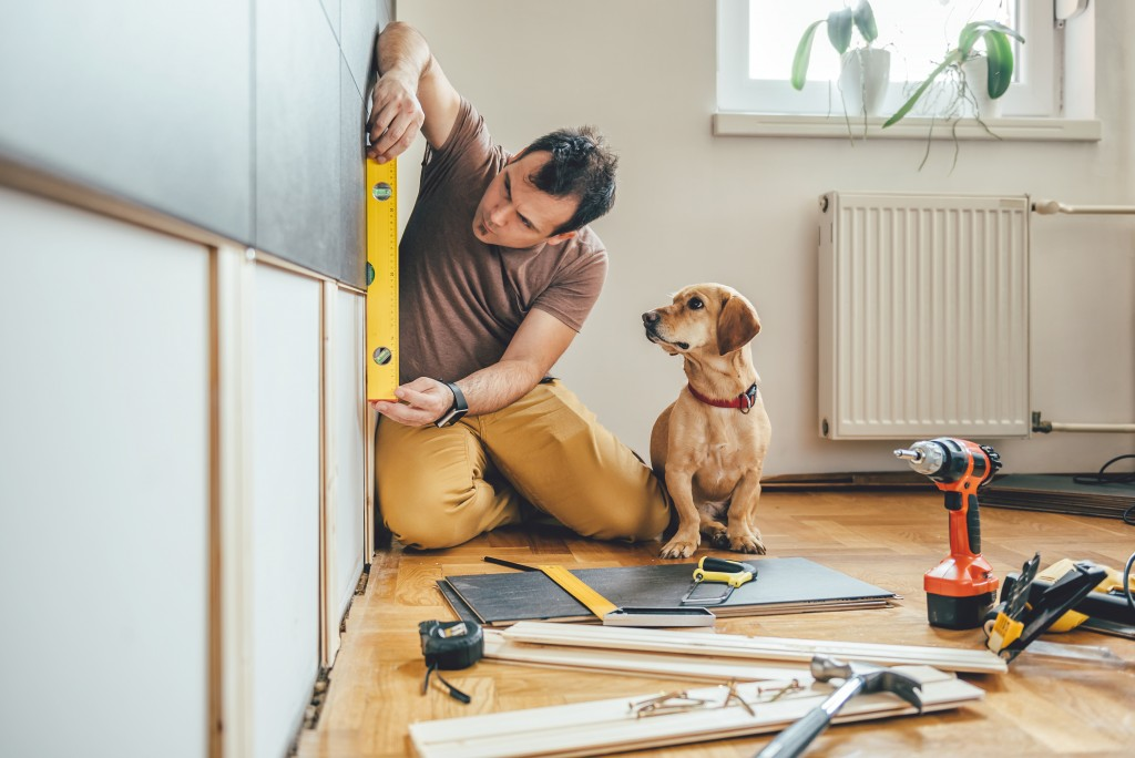 Man remodeling and constructing at home with his dog